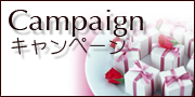 キャンペーン_Campaign